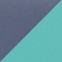 215 - Navy / Aqua Green